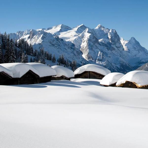 Alpentowerflug Region Meiringen/Hasliberg