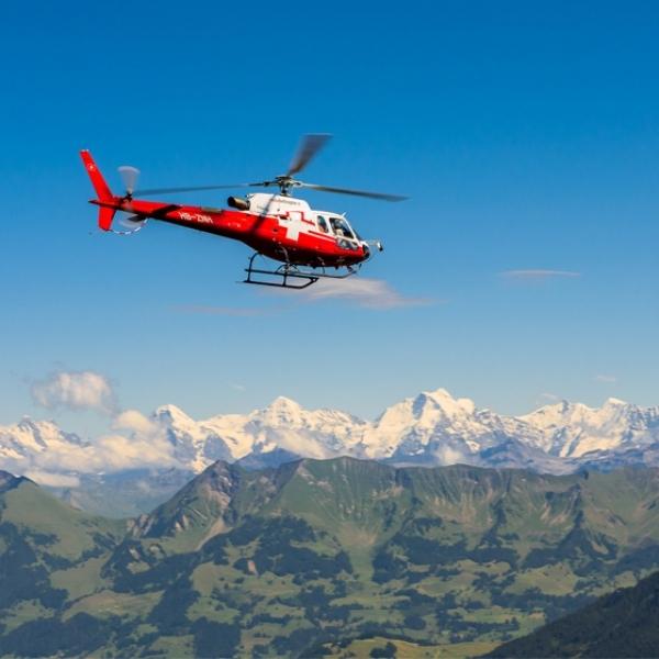 Grosser Lenker Alpenflug
